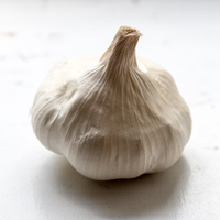 Beauty 20  20garlic 20regular 2429 thumb